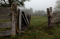 Weathered fence in morning fog.
